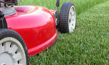 Lawn Care in Atlanta GA Lawn Care Services in Atlanta GA Quality Lawn Care in Atlanta GA